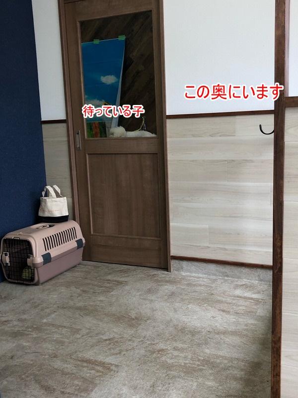 s-01f68f90c677e83cb1300d0f5af02eb63019ddcad1.jpg