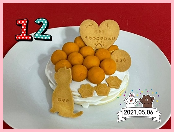 azuki2_20210506215325716.jpg