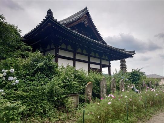 hannyaji31.jpg