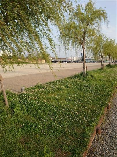 park7_20210526154111a7e.jpg