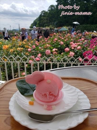 rosepark32_2021060116064731f.jpg