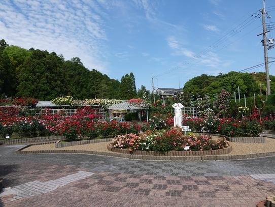 rosepark_2021052815502141f.jpg