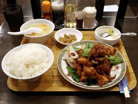 hyakusaitori03.jpg
