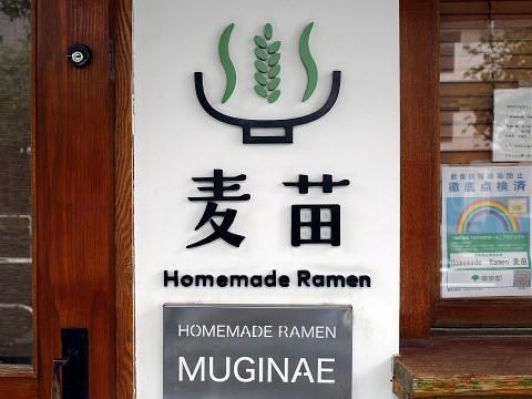 islandmuginae04.jpg