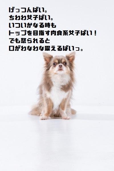 051_20210601200320261.jpg