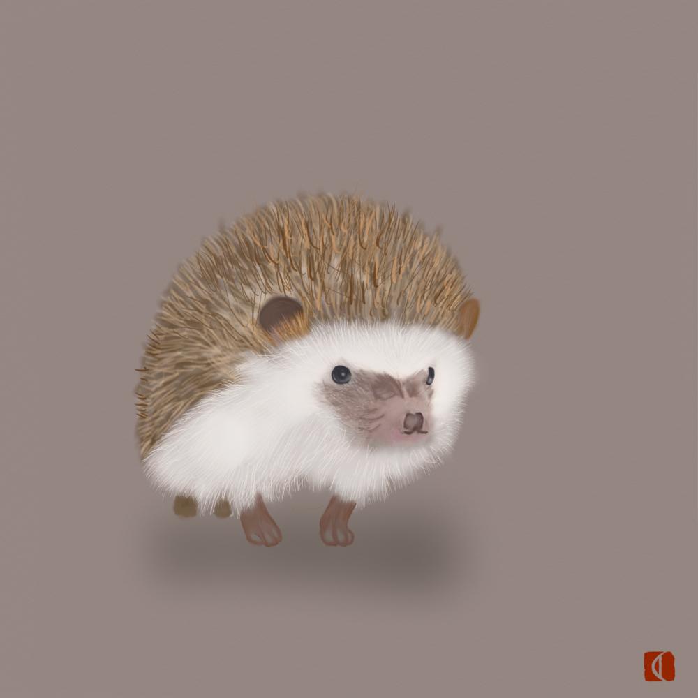 7-14-針ネズミ