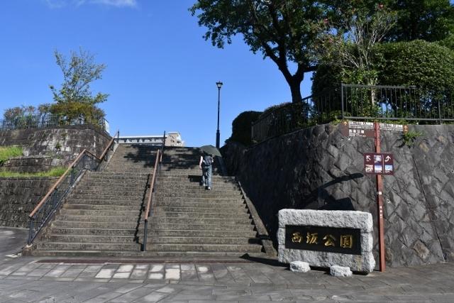 26せいじんKIMG2492 (2) (640x427)