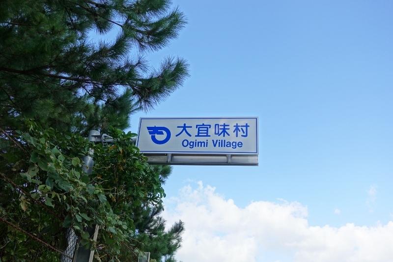 DSC07901 (800x533)