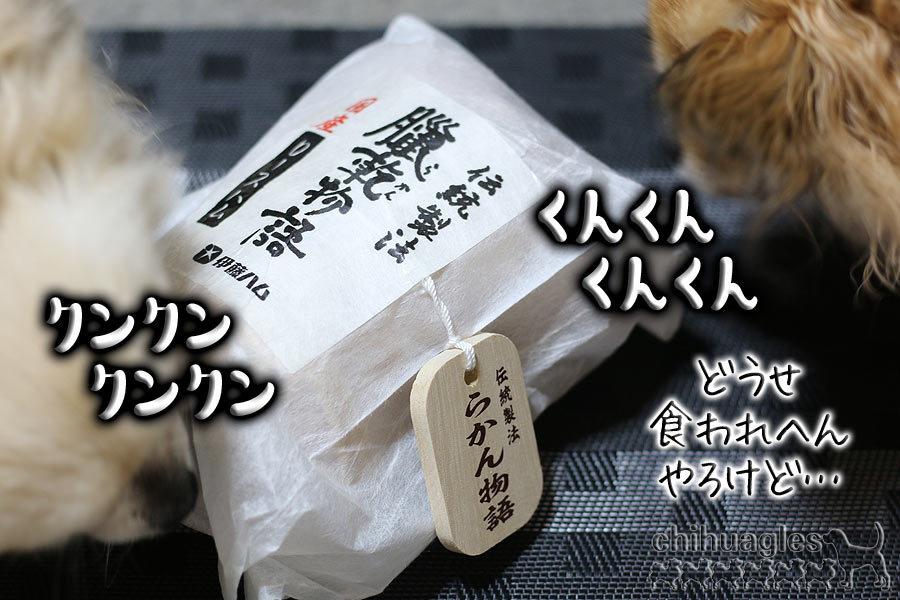伊藤ハムの臘乾物語/らかん物語とチワワ