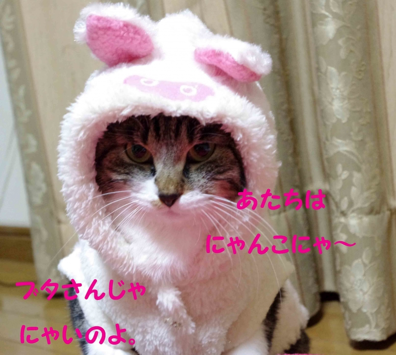 2012 02 15_2200_edited-1