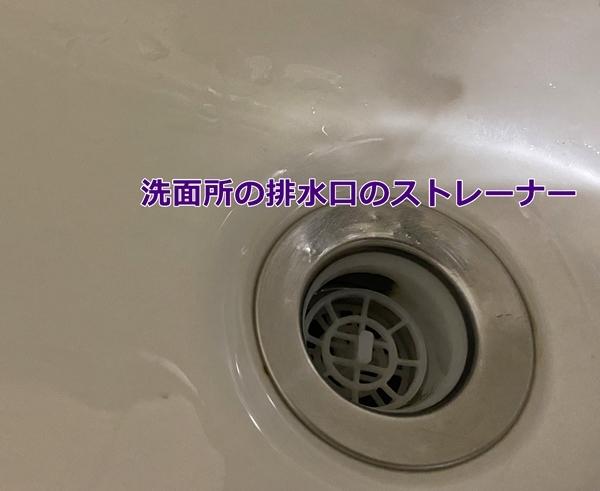 IMG_3274-1.jpg