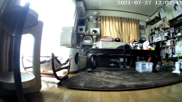 fc2blog_202107272157542c9.jpg