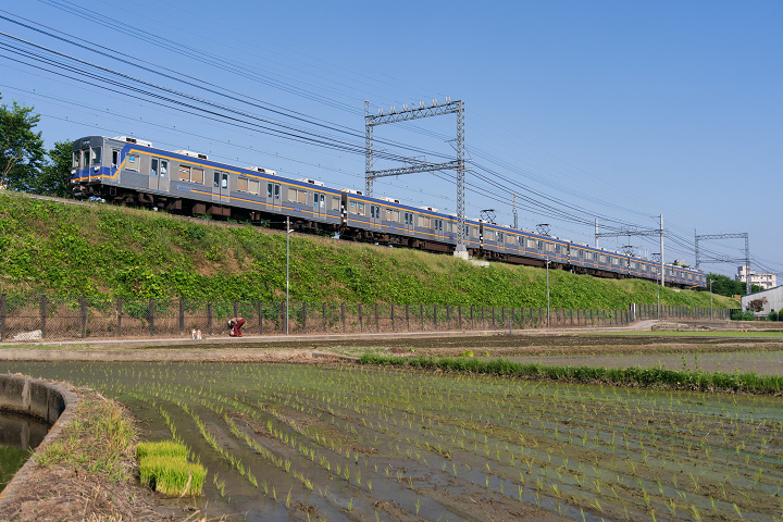 Nankai6200-75s.jpg