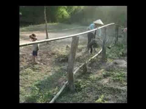 子供と遊ぶサル_01