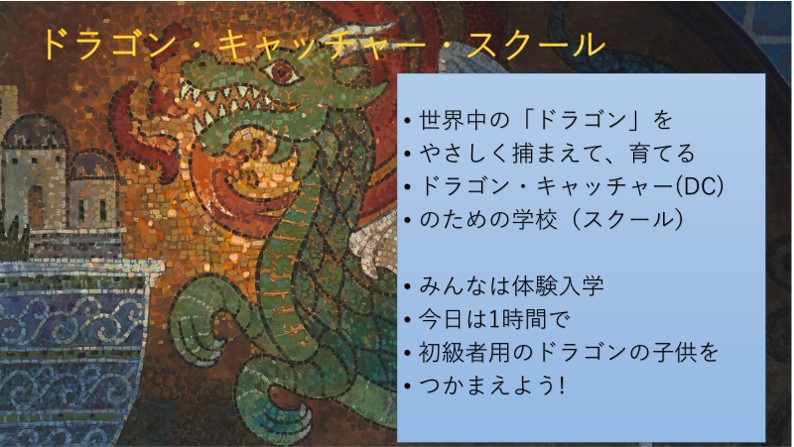 棚田ドラゴンキャッチャー報告_02