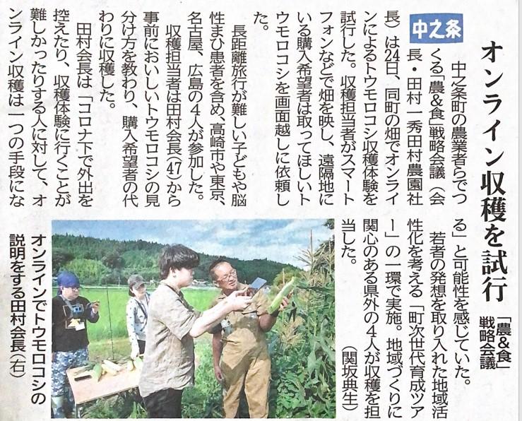 🌽トウモロコシ狩りオンライン_新聞記事