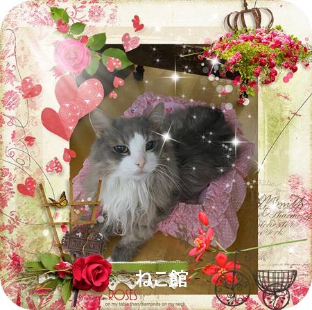 blog3_20210510074502cae.jpg