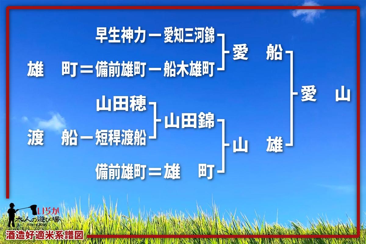 愛山202106-1