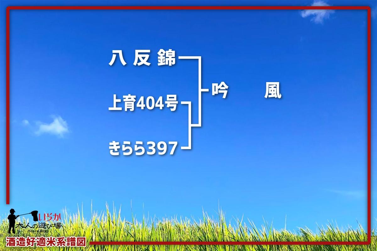 吟風202106-1