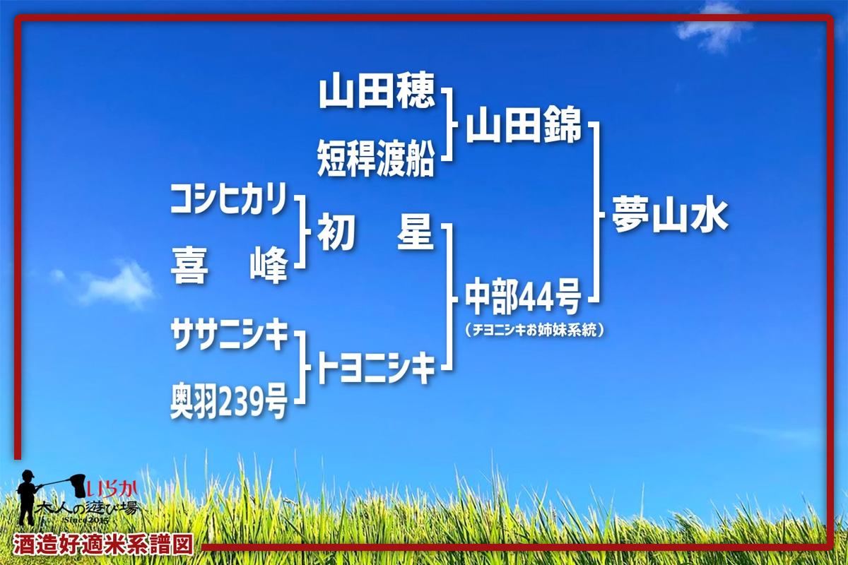 夢山水202106-1