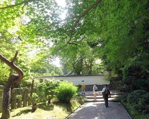 210531秋篠寺