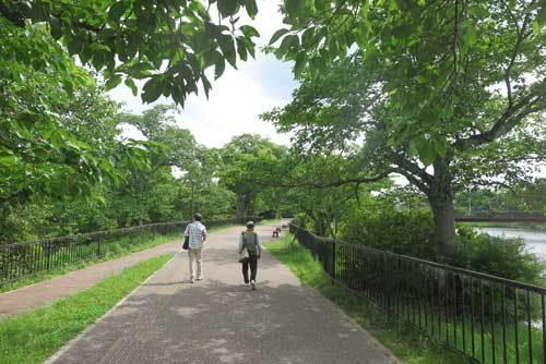 210602菖蒲池公園