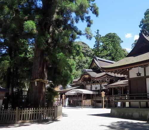 210719大神神社