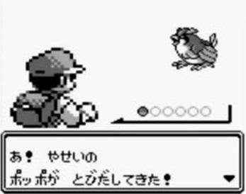 5-10-pokemon-poppo.jpg