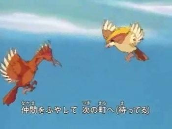 pokemon-op.jpg