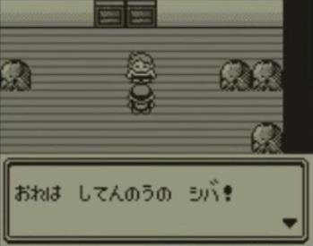 pokemon-shiba_20210518104836f73.jpg