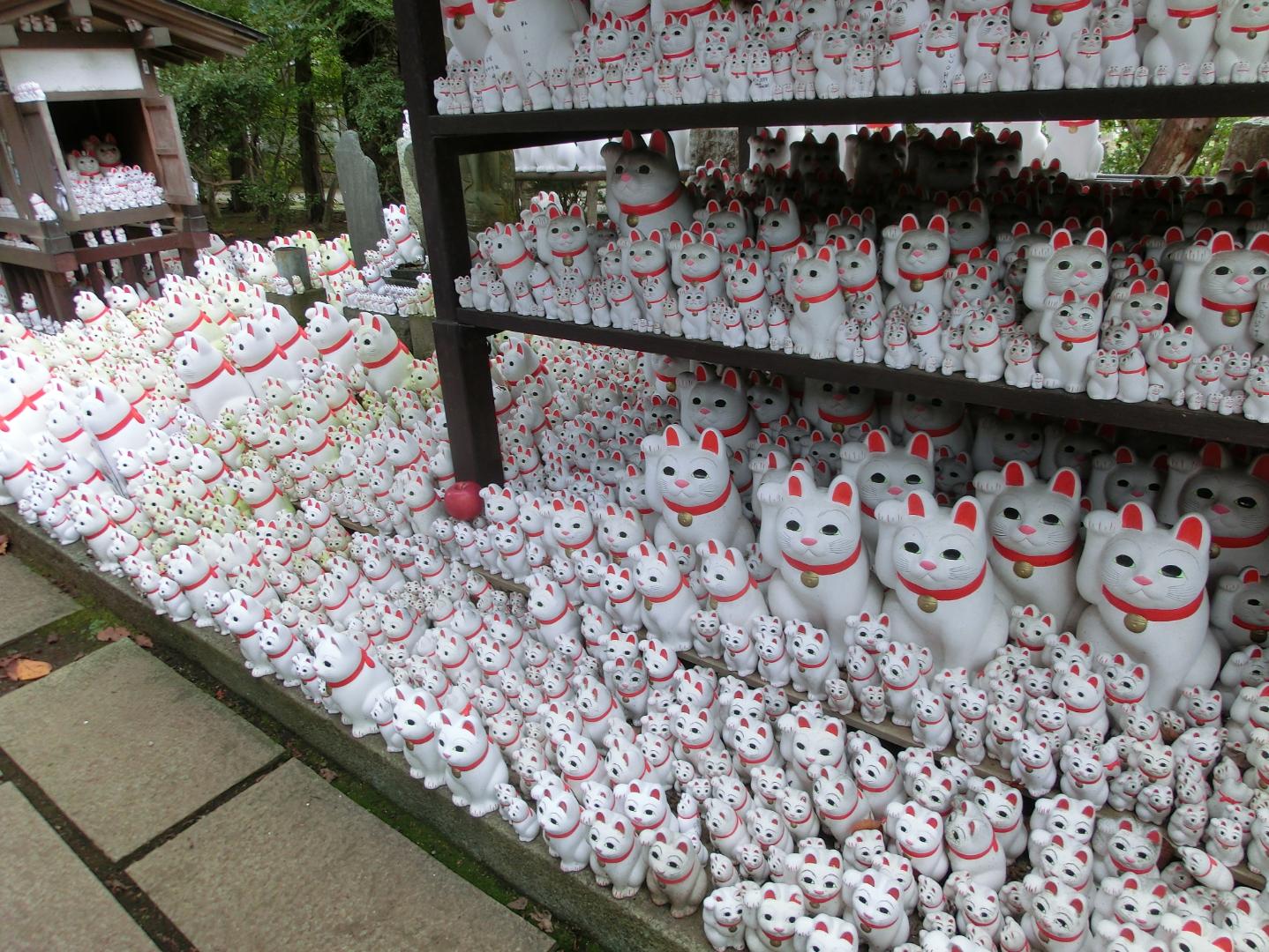 豪徳寺 多くの招き猫 カフェトレジャー記事