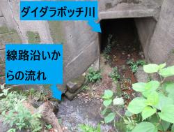 ダイダラボッチ川 開口部 代田・代沢散策1