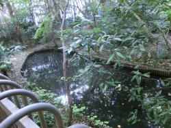 NITE 池1 代々木八幡・初台・西原・大山散策記事3