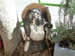 狸の置物 オタヌキサン記事