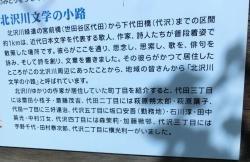 代田・代沢散策2文学者が多いとの記述