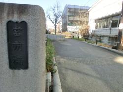 北沢川緑道 代田・代沢散策2