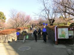 羽木公園 代田・代沢散策2
