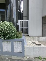ダイアパレス代官山の脇 三田用水跡散策6