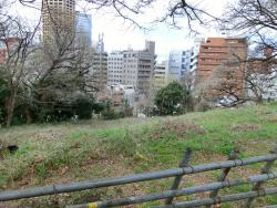 駐車場脇の崖 三田用水跡散策6