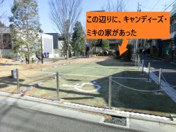 キャンディーズ・ミキの家跡 代田・代沢散策3