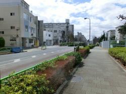 新茶屋坂 三田用水散策7