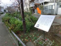 横光利一の文学顕彰碑 代田・代沢散策5
