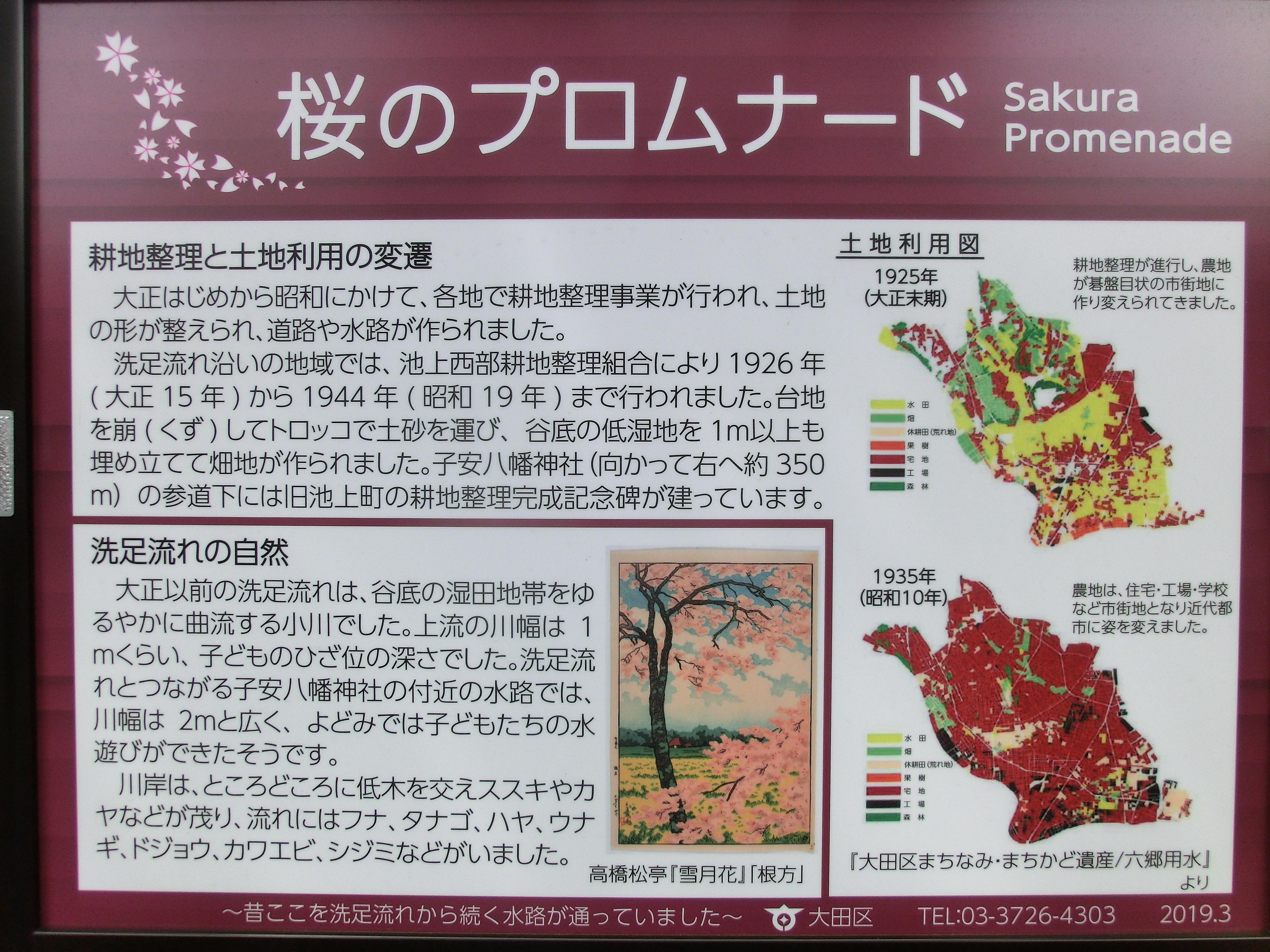 桜のプロムナード 池上本門寺散策1