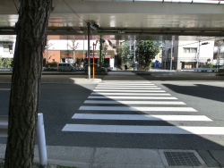 左右が下り坂 三田用水散策8