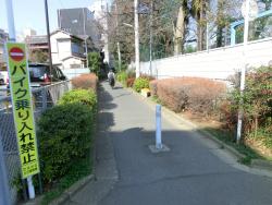 森厳寺川跡2 代田・代沢散策6