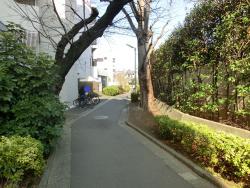 森厳寺川跡3 代田・代沢散策6