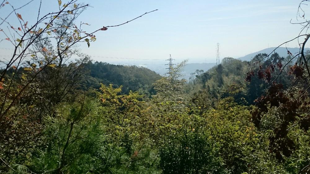 天王山山頂からみた景色