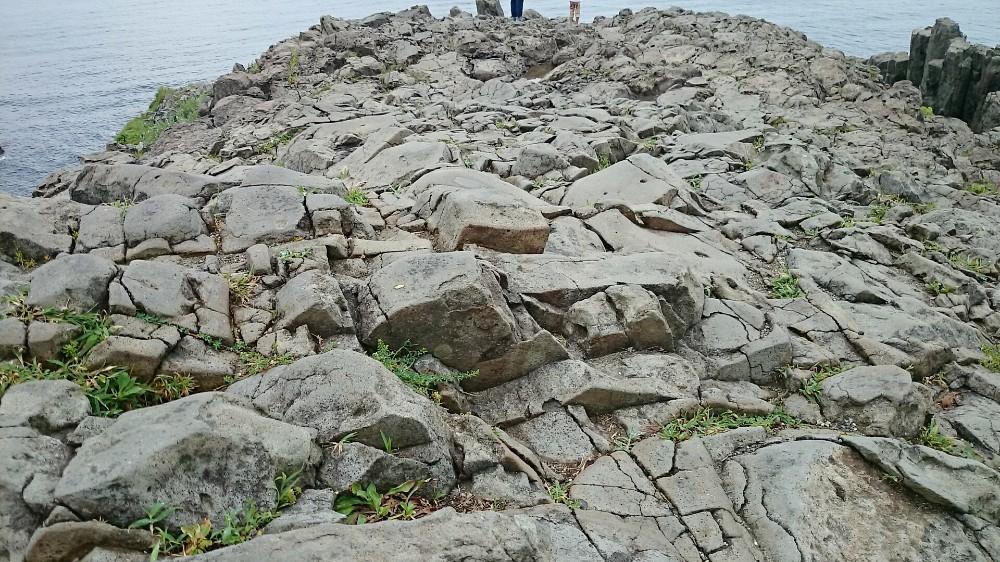 東尋坊の岩肌
