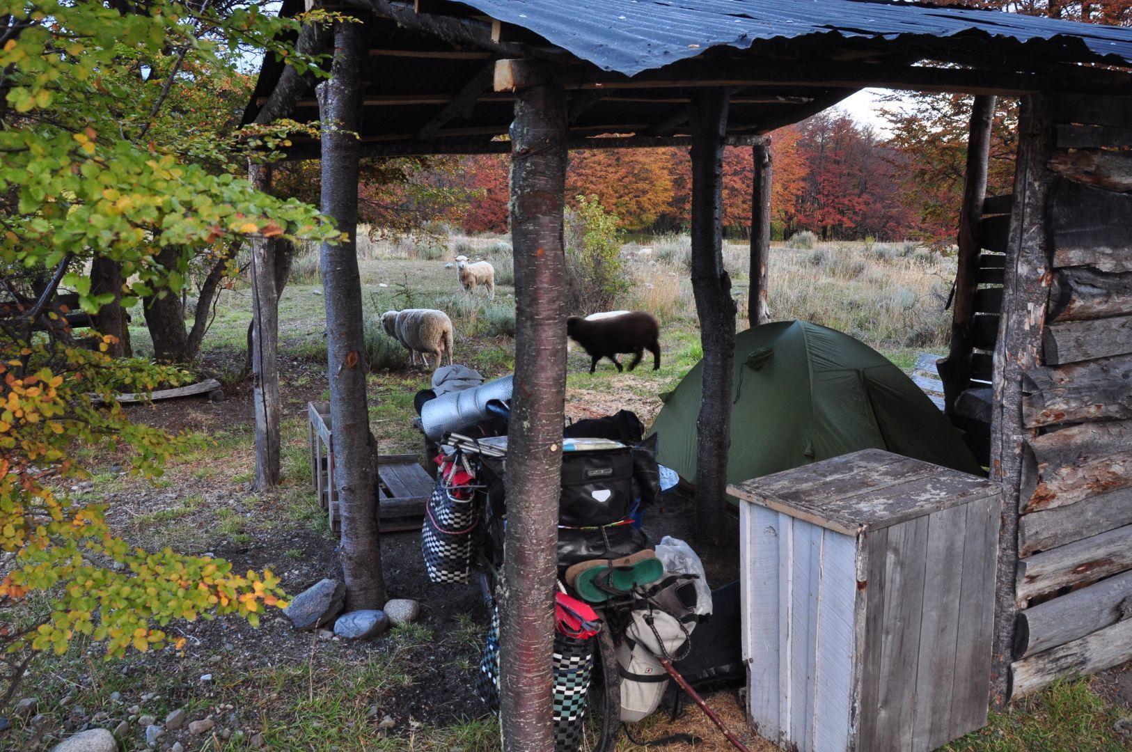 camping por gratis con suerte