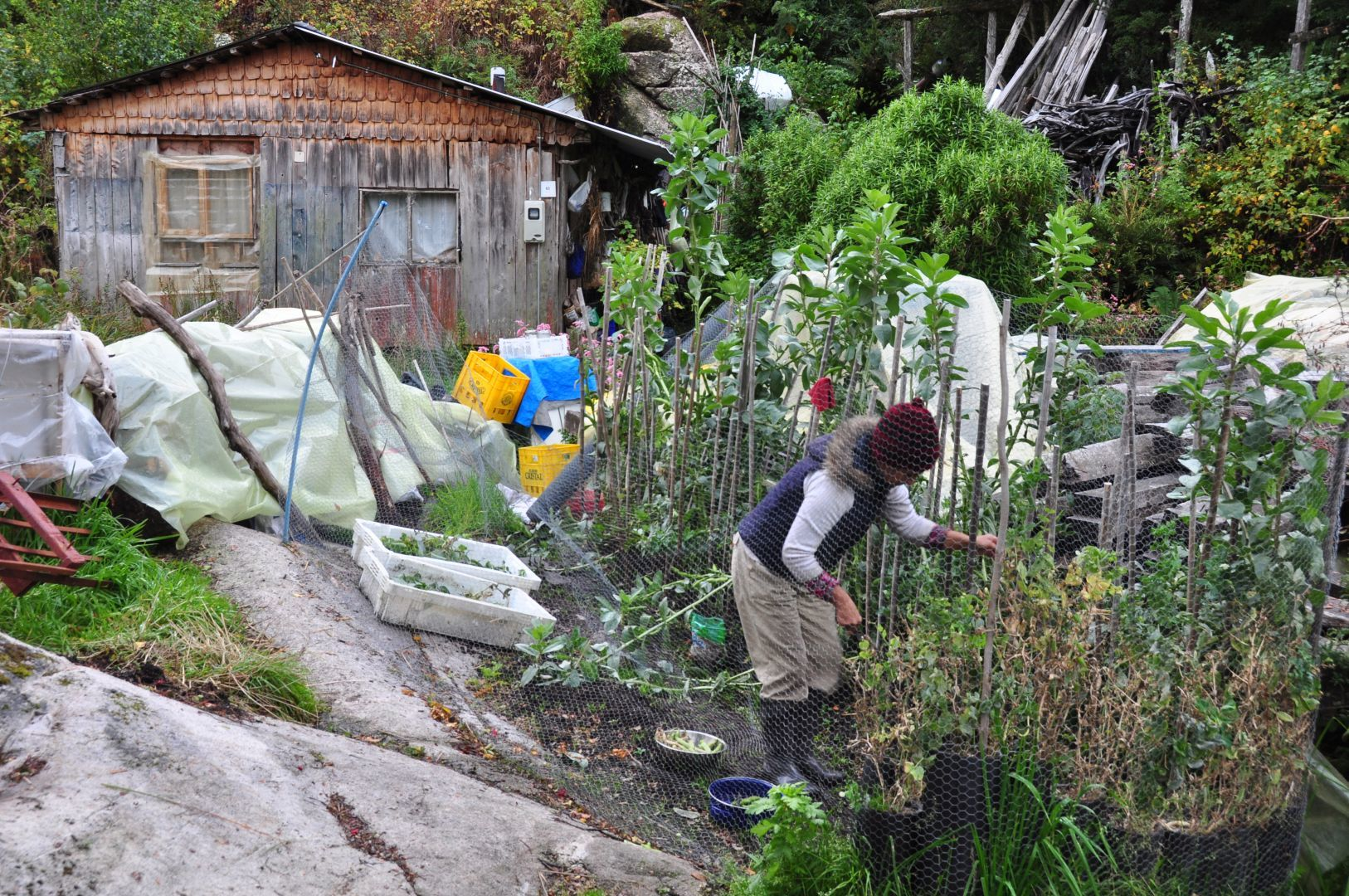 la casa y el jardin de erica